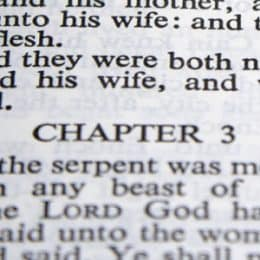 Biblical Foundation For Marriage Day 2