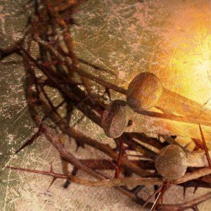 The Suffering Of Jesus